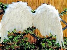 Comment fabriquer des ailes d'ange ?