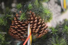 Natal | 2014 | HOME 4 TWO | Realização e Foto: Fabiana Bellentani