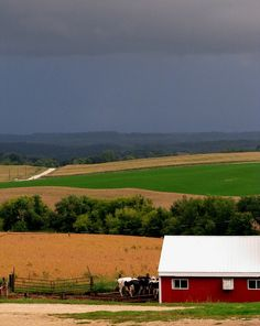 Iowa.  The state where I found my second and third families.  Farm Life – 2011 Capture the Heart of America Photo Contest