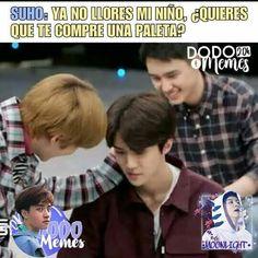 Suho, Exo Memes, Funny Memes, Kpop, Bts, Vines, Geek, Frases, Korean Guys