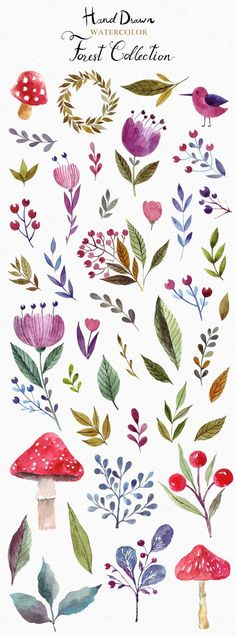 Welcome to Molesko Studio! --- This is a New Big Great Watercolor Collection with forest animals and floral elements. All watercolor elements was hand painted, Illustration Blume, Pattern Illustration, Watercolor Illustration, Illustration Flower, Forest Illustration, Watercolor Clipart, Floral Watercolor, Watercolor Pattern, Simple Watercolor Flowers
