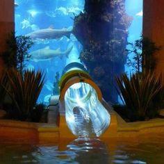 Atlantis Water Park, Dubai