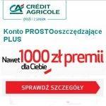 Konto PROSTOoszczędzające PLUS w Credit Agricole to wygodne konto wyposażone w bogaty pakiet atrakcyjnych usług dodatkowych, które powinny zadowolić potencjalnego Klienta. Atutem Konta PROSTOoszczędzające PLUS są niezbyt wysokie, opłaty związane z jego prowadzeniem, których można