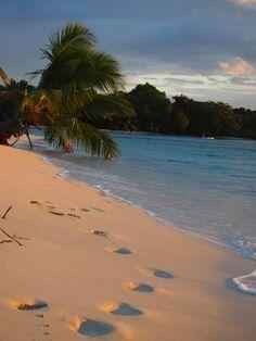 Ile Sainte - Marie Madagascar