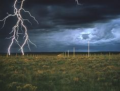 Walter De Maria the lightning field. He does earth art. He sets up rods in a field and you can go to New Mexico and actually see the lightning hitting the rods. I really want to see this!