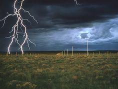 Lighting Field.   Obra de Walter di Maria realizada en el año 1977 y que tiene al arte como concepto.  Son 400 postes de aceros enterrados en el suelo en un lugar donde las tormentas eléctricas son una constante. De ahí que cuando estas se producen, las imágenes creadas son espectaculares.