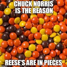 I don't like most of the Chuck Norris stuff, but this one made me smile for some reason. Funny Pictures, Funny Pics, Funny Stuff, Funny Shit, Chuck Norris Memes, Funny Jokes, Hilarious, Only In America, Tough Guy