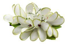 Hawaii Luau Party Dance Artificial Fabric Plumeria Flower Hair Clip White with Green Edge