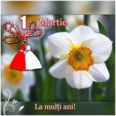 1 Martie 8 Martie, Braut Make-up, Social Platform, March, Joy, Christmas Ornaments, Holiday Decor, Birthday, Frame