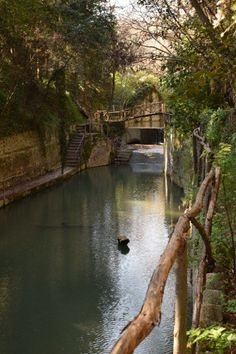 Rhodes & Rodini Park, Greece