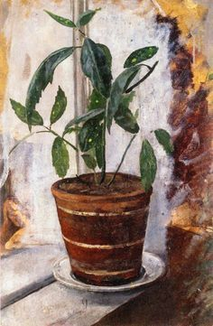 Edvard Munch - Potted Plant on Windowsill, 1881/82