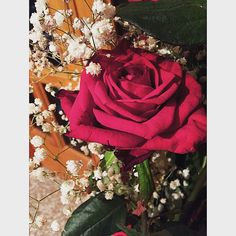 #redroses #love #followme #passion