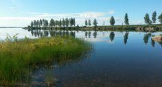A beautiful day in Kemi, Mansikkanokka