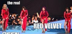 Ahhhh yes the whole picture of XY's in red dresses.. Kyuhyun, Suho, Minho, Changmin