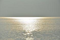 Golden light  Katja Wulfers©