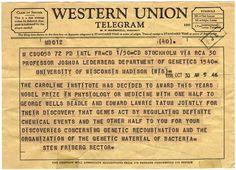 Western Union Telegram Schedule