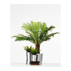 FEJKA Artificial potted plant - IKEA £20