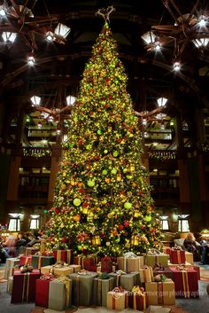 Christmas tree in the lobby of Disney's Grand Californian Hotel