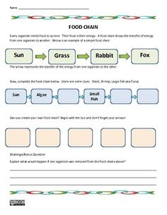 Food web worksheet year 7 livinghealthybulletin ibookread PDF