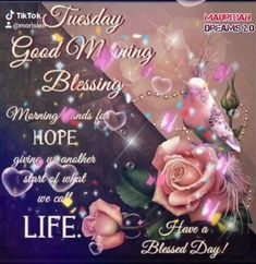 Inspirational Good Morning Messages, Cute Good Morning Quotes, Good Morning Inspiration, Good Morning Prayer, Good Day Quotes, Morning Blessings, Good Morning Picture, Good Morning Tuesday Wishes, Good Morning Happy Friday