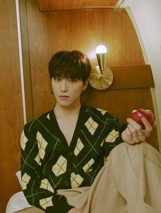 Dino Seventeen, Mingyu Seventeen, Seventeen Debut, Seventeen Comeback, Kpop Comeback, Jeonghan, Diecisiete Wonwoo, Vernon, Fandom