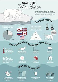 Save The Polar Bears infographic design