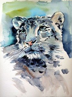 Buy Snow leopard, Watercolour by Kovács Anna Brigitta on Artfinder. Discover thousands of other original paintings, prints, sculptures and photography from independent artists.