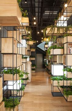 Pendas indoor planting modules provide a green oasis inside Home Cafe (Dezeen Interiors) Nachhaltiges Design, Cafe Design, House Design, Design Ideas, Deco Restaurant, Restaurant Design, Store Concept, Interior Architecture, Interior Design