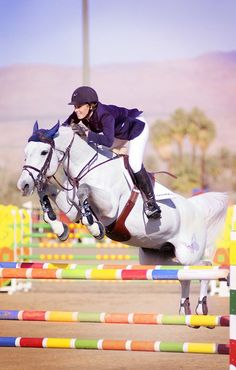 Show jumping - multicolored jumps