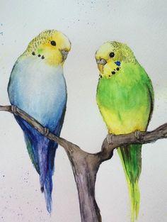 Original Watercolour Painting Budgies Nancy Antoni Animal Birds | eBay