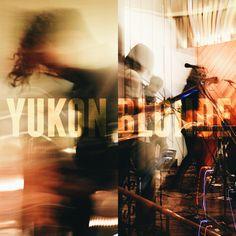 Yukon Blonde in Medicine Hat | Editing Luke