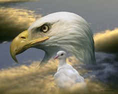 Image result for dove and eagle together
