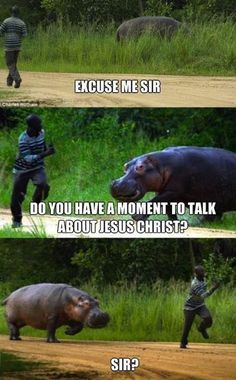 "I love all of the ""excuse me sir?"" memes. I just hope the hippo didn't catch that guy."