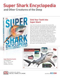 Sink your teeth into Shark Week with activity sheets from Super Shark Encyclopedia.