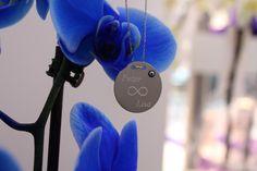 Isimli kolye gümüs (kisiye özel isim yazilabilinir)  Fiyat: 29,90€ Namenskette silber, 29,90€