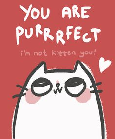 Image result for you are purr fect images