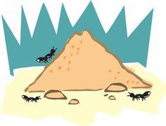 Veja como você pode afastar as formigas com alimentos que já tem em casa!