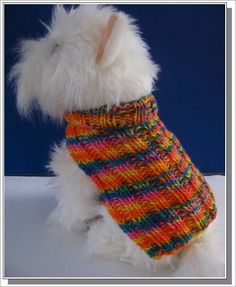 The pet parade free knitted dog sweater pattern omg im totally easy knitting patterns for beginners basic ribbed dog sweater knitting pattern very easy to knit dt1010fo