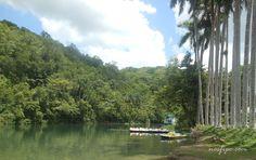 El Rio Canímar Área Protegida de Matanzas en la zona de La Arboleda