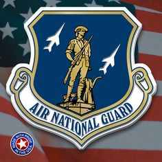 Military UNITED STATES AIR FORCE MAGNET/'s Refrigerator Magnet #4 Four U.S