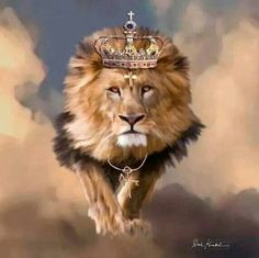 The Great Lion Of Judah..