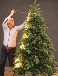 Effortless Christmas Tree Lights