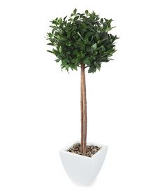Closer2Nature Artificial 4ft Bay Tree Ball Topiary - Pot and Stones Not Included