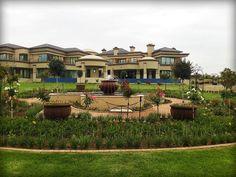 Living Green Lanscapes - a stunning Landscaped Garden