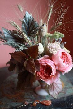 Los Claustros: flores