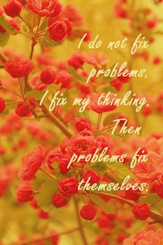"""""""I do not fix problems. I fix my thinking. Then problems fix themselves."""" Cognitive-Behaviour Therapy (CBT) in a nutshell!"""