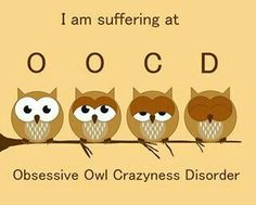 I think I might have OOCD ~ Obsessive Owl Crazyness Disorder :p