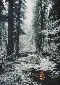 camping winter time, forrest, winter wonderland