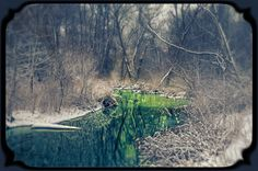 Sring Snow_9647
