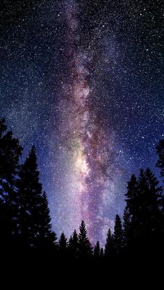The Milky Way Outer Space Poster Beautiful Colors Light Stars Trees Sf Wallpaper, Galaxy Wallpaper, Hipster Wallpaper, Forest Wallpaper, Amazing Wallpaper, Mountain Wallpaper, Computer Wallpaper, Mobile Wallpaper, Calvin E Hobbes